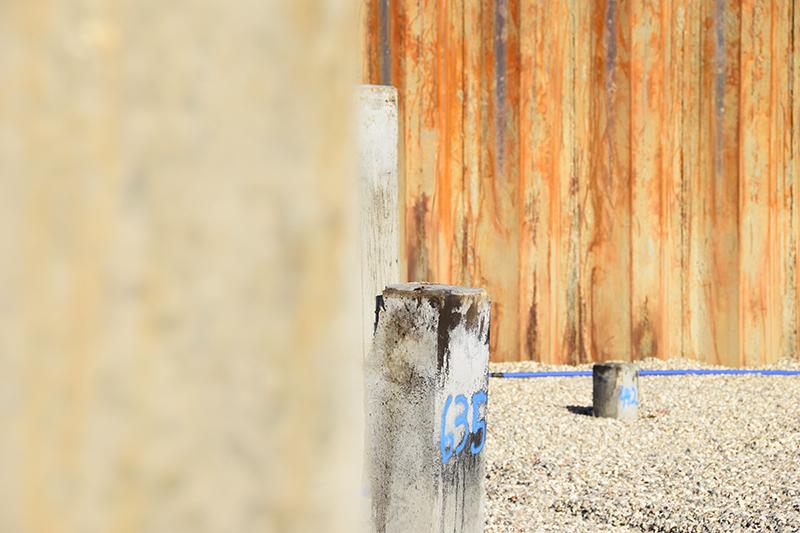 Papirøen - Christiansholm Ø. Nedrammede pæle. Byggegrubespuns i baggrunden.