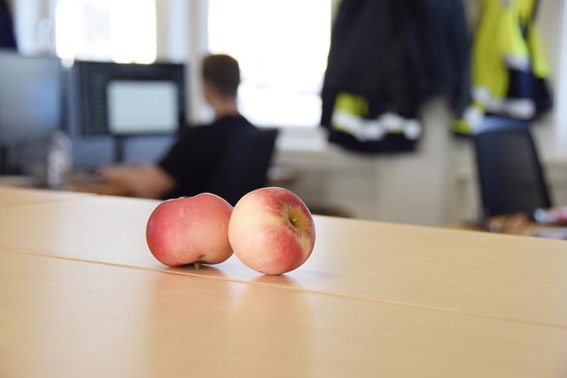 Papirøen - æbler i byggepladskontoret